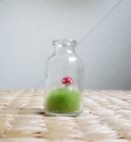 fiole-champignon-miniature.jpg