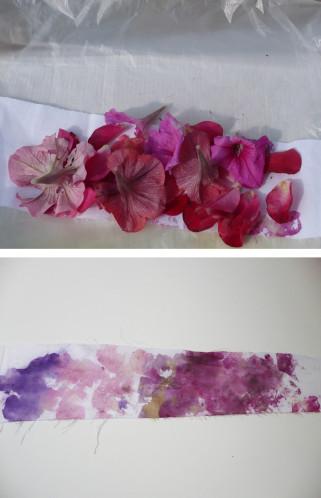 duo teinture rose fleurs