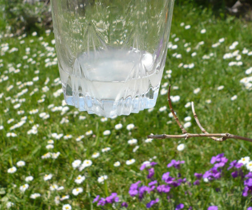 R colter le gel d aloe vera avec deux z for Gel a depolir le verre
