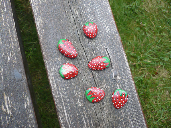 fraises-cailloux.jpg