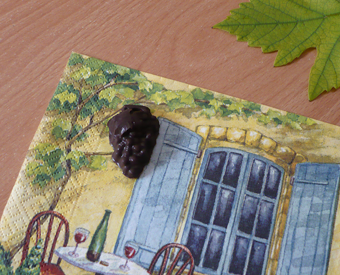 raisin en chocolat 2