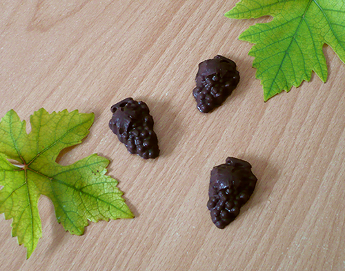 raisins chocolat 2
